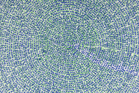So (detail) coloured pen on paper (2014)
