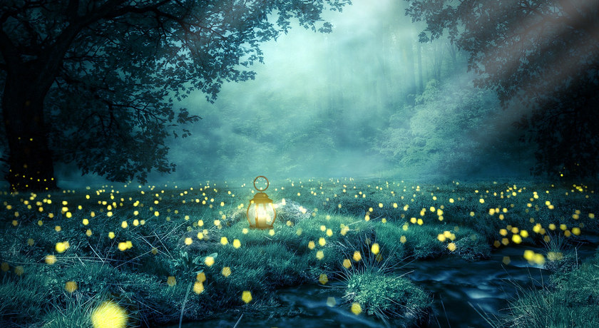 De la Lumière dans la Nuit
