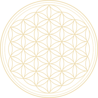 flower-of-life-2648527_1280_edited.png