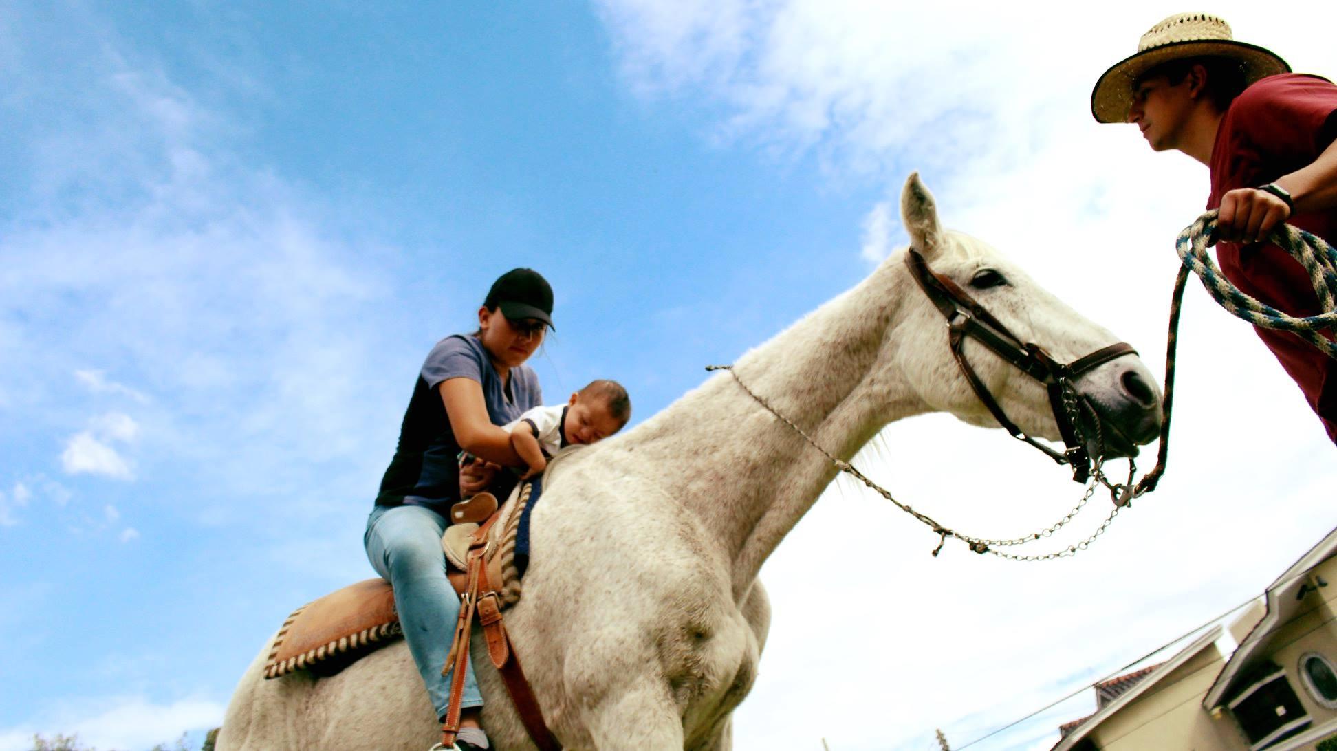 Equino-terapia