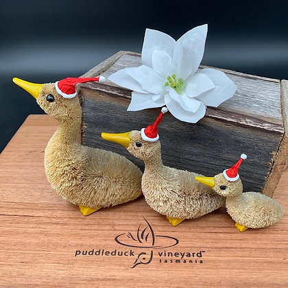Christmas Duck Bristle Brush Ornament Family