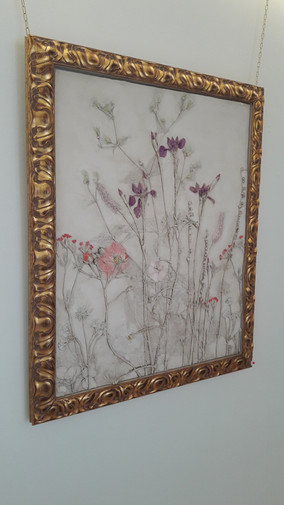 Botanical Plaster Art at Knockrose Garden