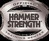 Logo Hammer Strengh.png