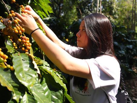 Chanya (Grace) Thanglerdsumpan: The Founding of RISing Coffee