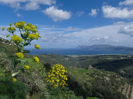 Spring in Crete!