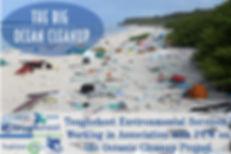 Ocean Cleanup.jpeg
