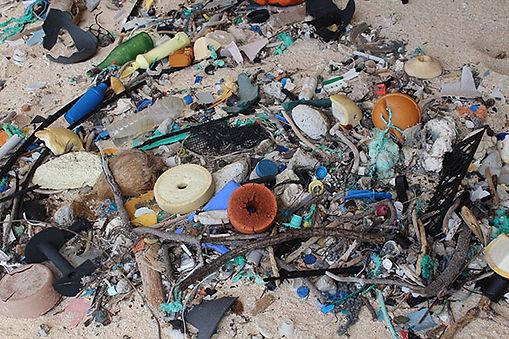 beach-waste-2.jpg