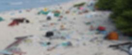 east-beach.jpg