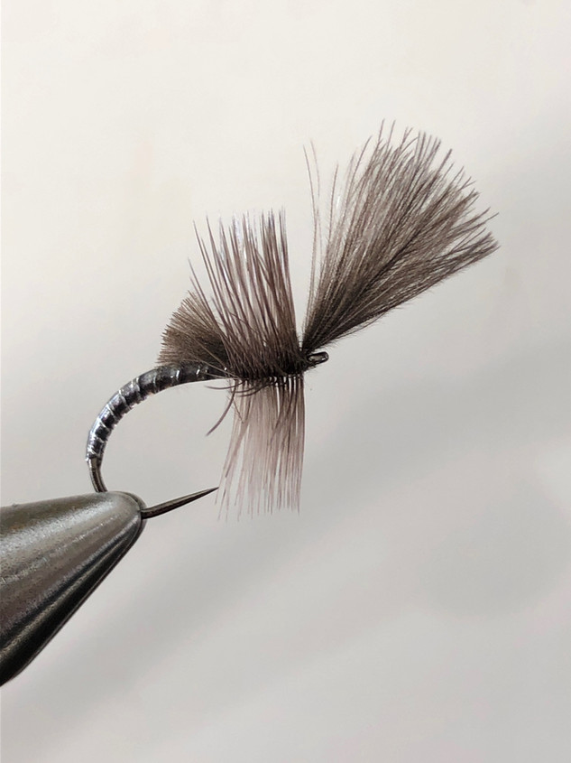 Step 6, when you finished your hackle to the front secure it with your tying thread, and make whip finished