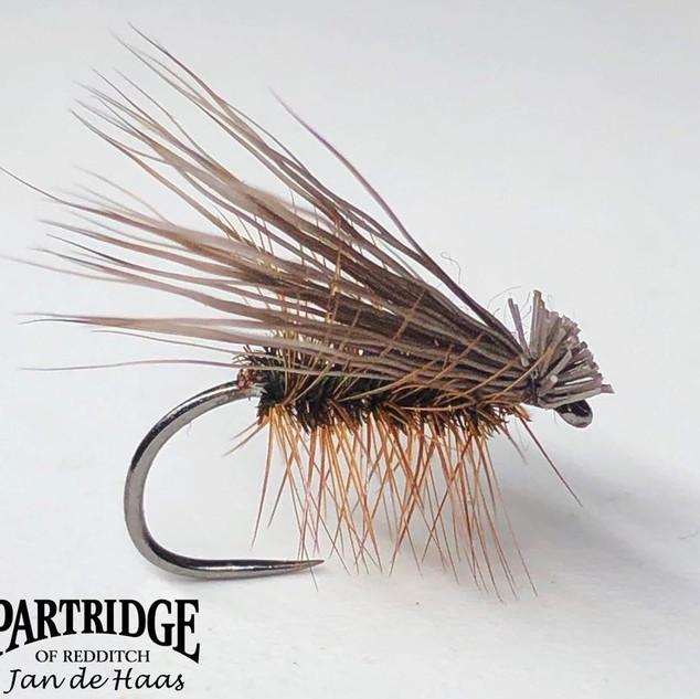 Buck Caddis