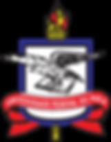 logo UFPA.png