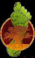 Un baobab sous le pied