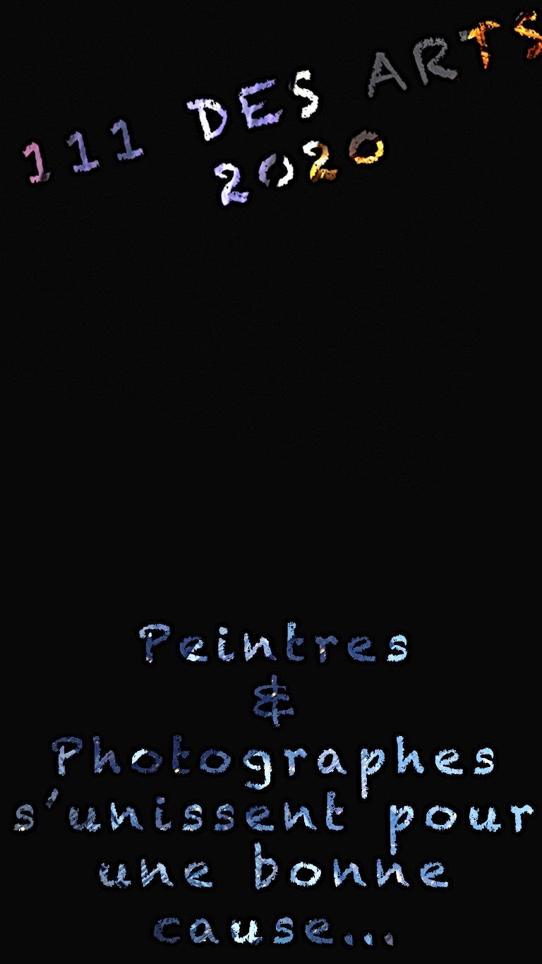 PAGE WEB 111 DES ARTS.jpg