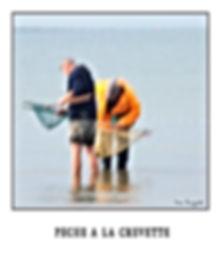 PECHE A LA CREVETTE.jpg
