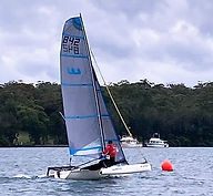 weta no kite 2.jpg