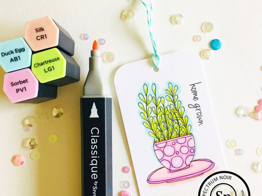 Video Tutorial: How To Doodle A Plant/ Coloring With Spectrum Noir Markers