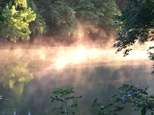 Early Mornings Stillness