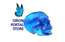 orion%20portal%20store_edited.jpg