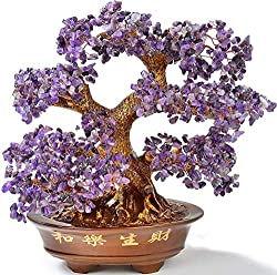 bonsai amethyst.jpg