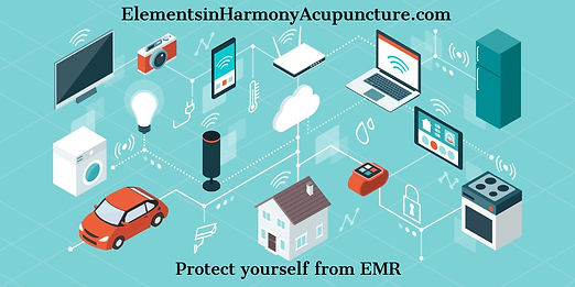 emr internet-of-things-and-smart-home-ve