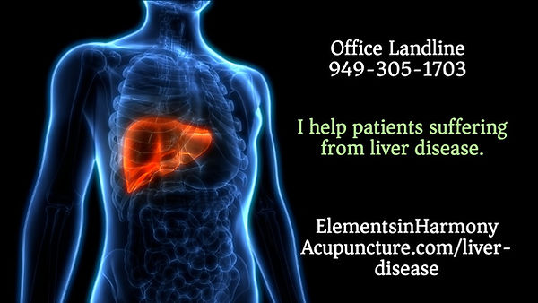 liver human-liver-anatomy-picture-id1022