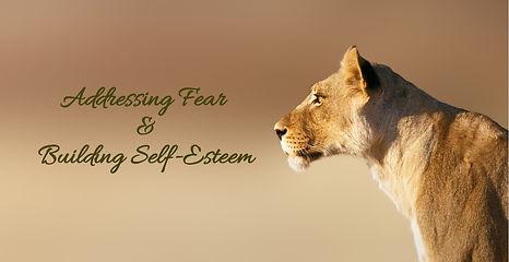 fear-self-esteem lioness-portrait-pictur