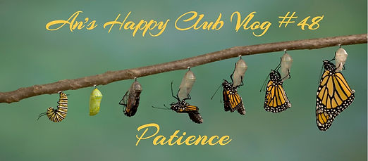 patience monarch-butterfly-emerging-from