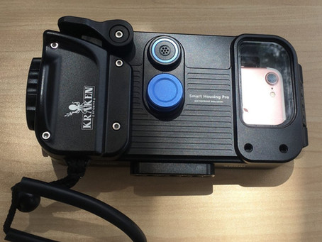 Underwater Phone Case Rental - Maui