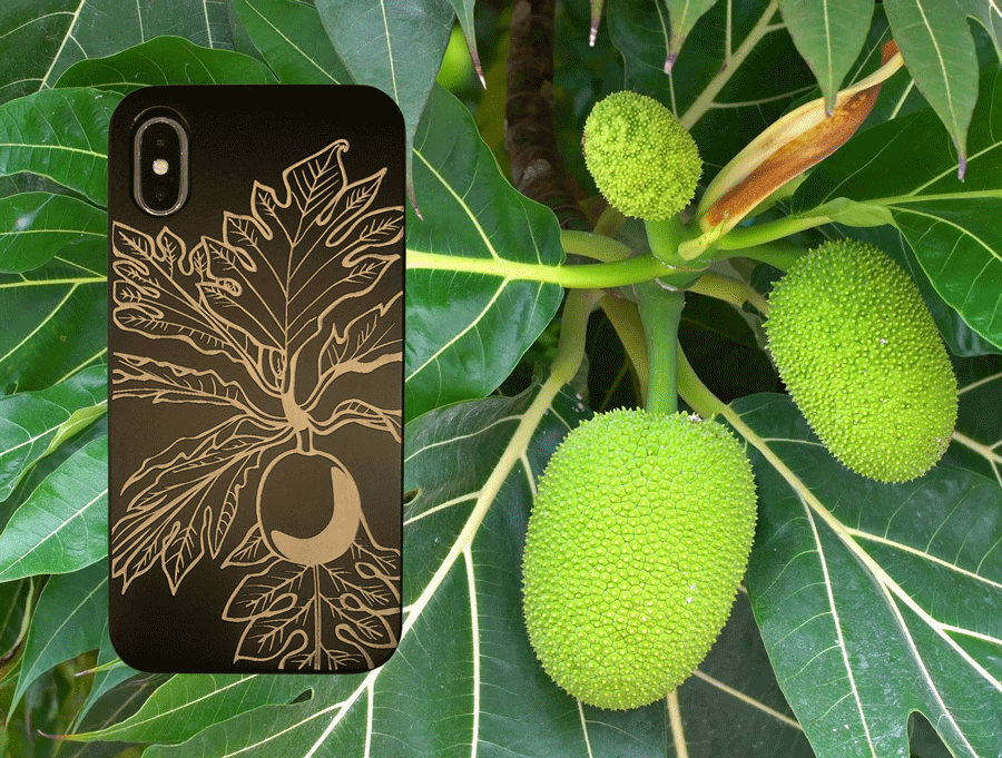 Breadfruit with Ulu Case