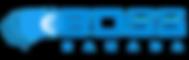 site_logo_NO BG.png