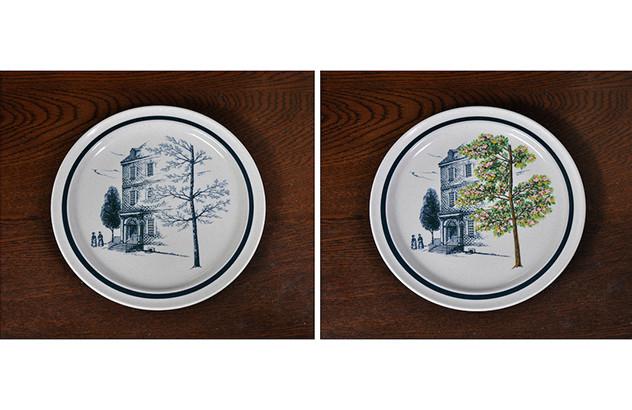 Four Seasons plates