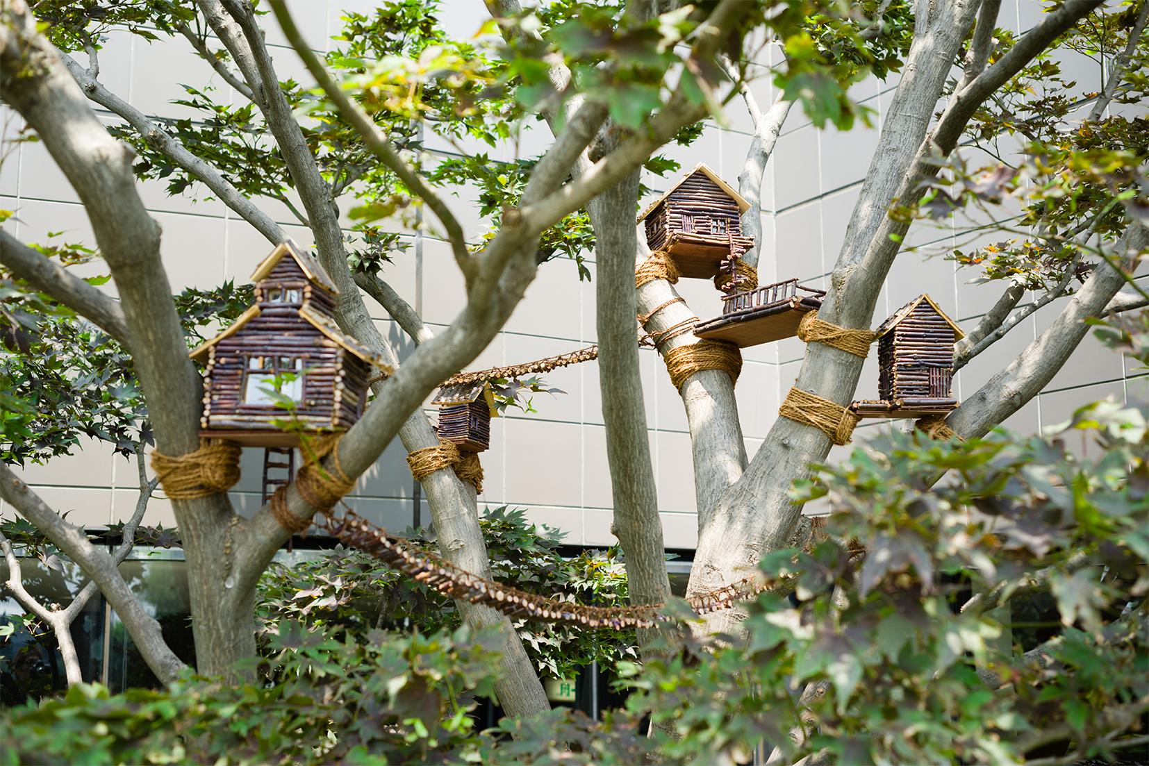 ツリーハウス Tree House