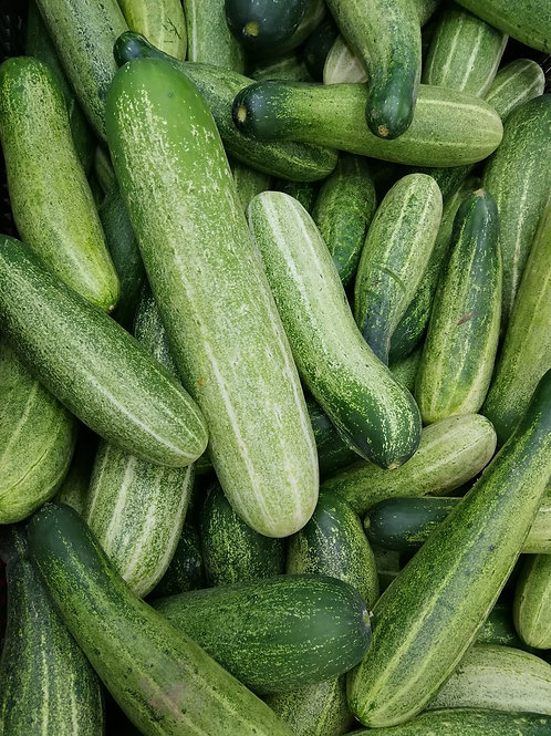 "Cucumber Assorted Veggie 4"" Pot"