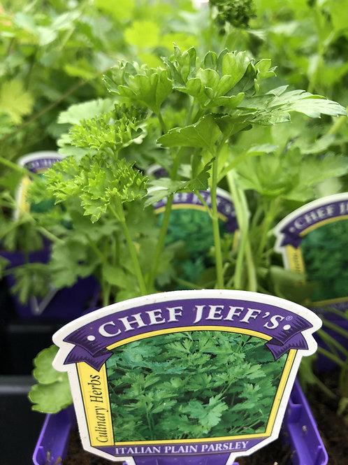 """Herbs Assorted 4"""" Pot"""