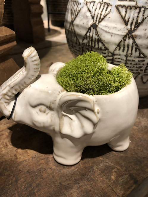 "Elephant Planter 5"""