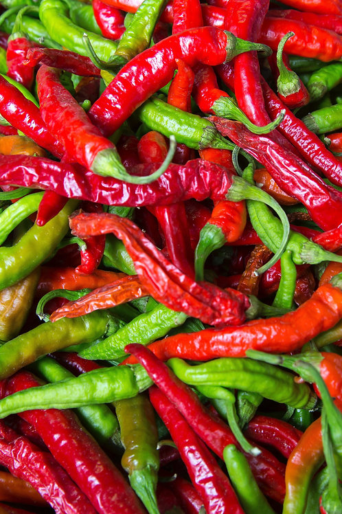 """Hot Peppers Assorted 4"""" Pot"""