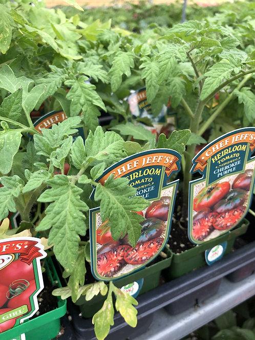 "Tomato Assorted Veggies 4"" Pots"