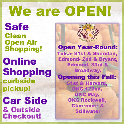 WE are OPEN now.jpg