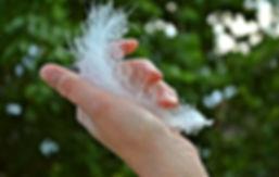 Let go feather.jpg