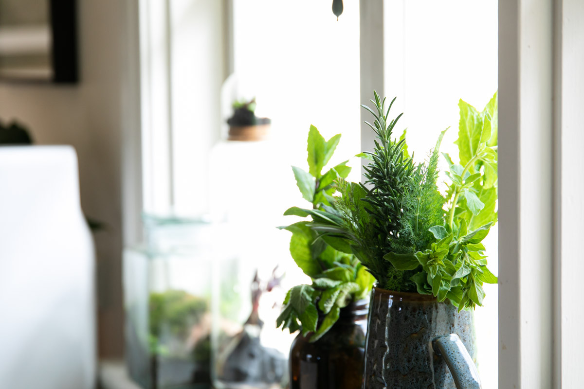 SundayHouse-KitchenHerbs.jpg