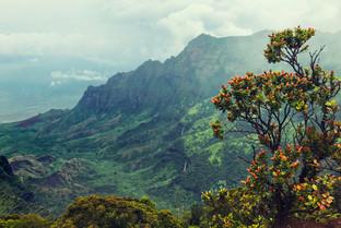 Kalaulau Valley