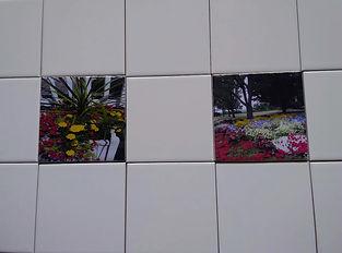 backsplashflowers.jpg