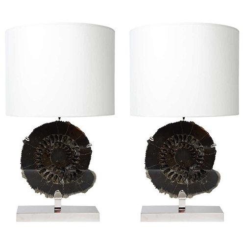 Pair of Black Ammonites Table Lamps