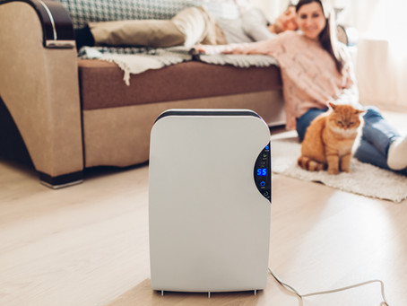 Purificateurs d'air : Arnaque ou solution miracle ?