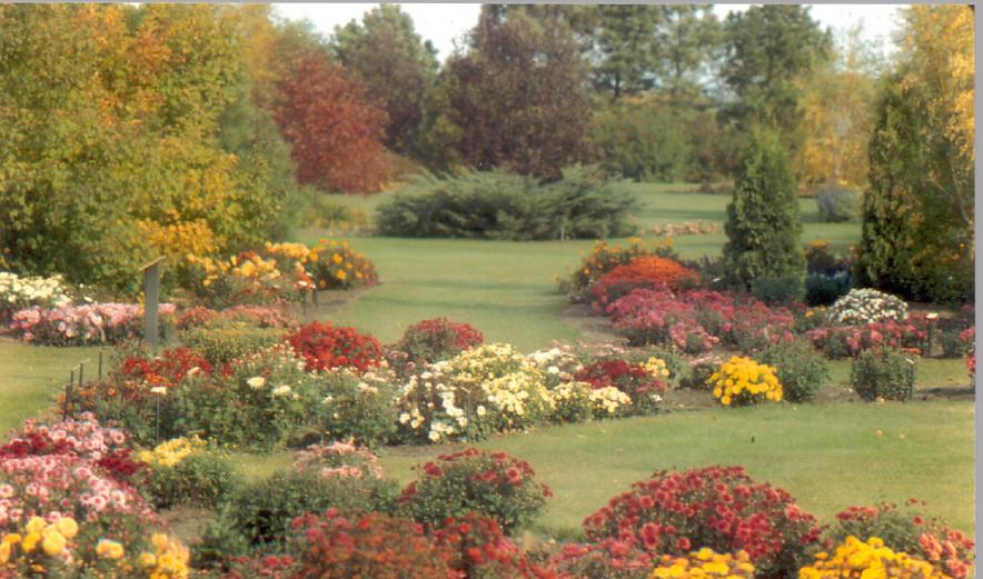 Mum Garden - 1990