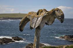 Whalebone, Skipigeo, Birsay