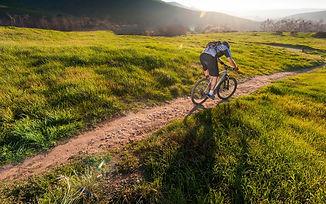 Bikes-1024x640.jpg