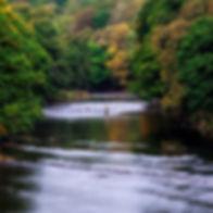 fishing640.jpg