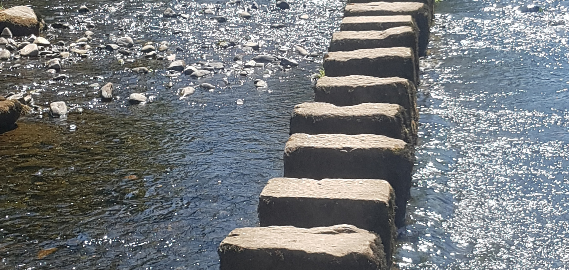 The stepping stones