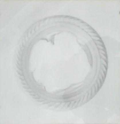 Plate. Pencil on paper, 27x27.jpg